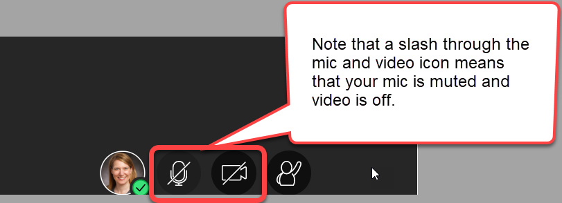"A close-up of the room's bottom edge is shown. From left to right is the demo moderator's icon, the mic icon, the video icon and the ""raise hand"" icon. The mic and video icon are highlighted with a red box and a caption bubble."