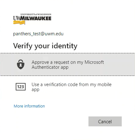 Verify your identity another way